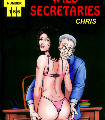 Porn Comics - Wild Secretaries
