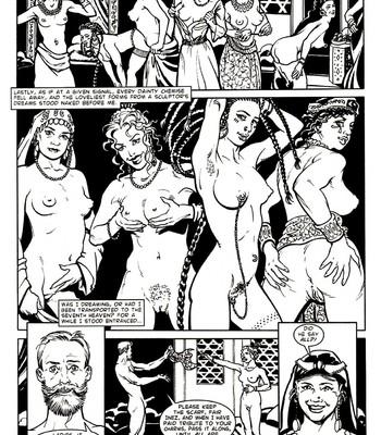 A Night In comic porn sex 012