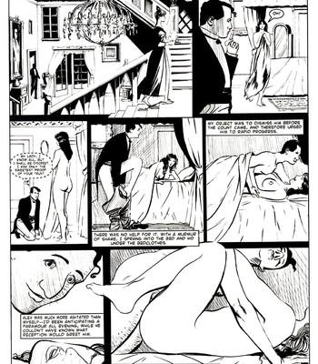 A Night In comic porn sex 033