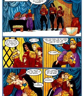 A Night In comic porn sex 065
